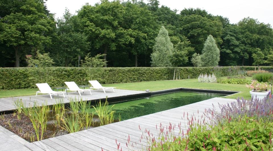 natuurzwembad maken zwemmen op het eikendal venhuis zwemvijvers